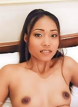 Small boobie Thai